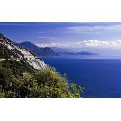 L'Essentiel de la Corse