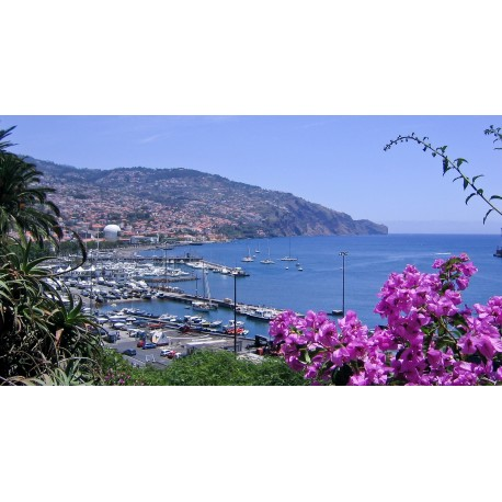 Madère, l'île aux fleurs 4****