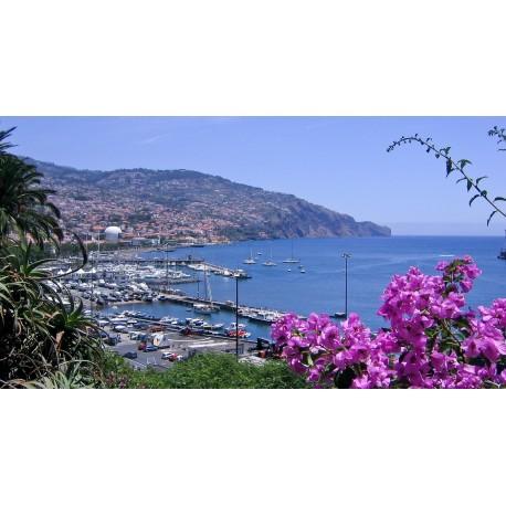 Madère, l'île aux fleurs 3***
