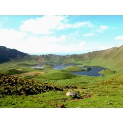 Merveilles des Açores